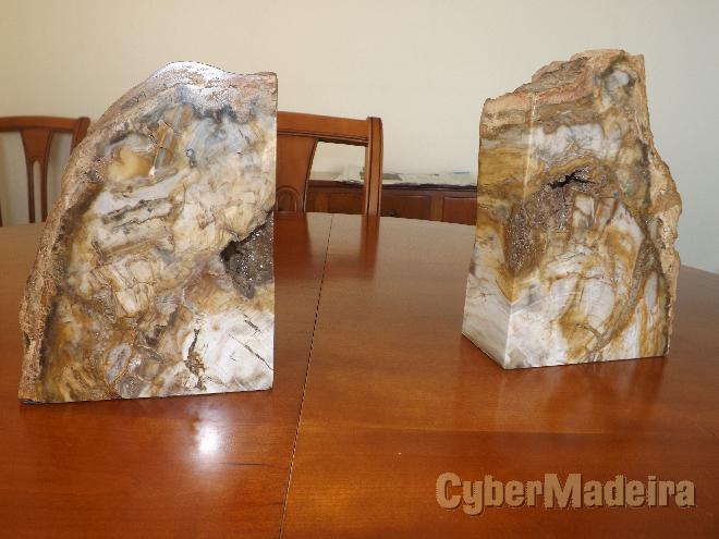 2 peças troncos pedrificadas