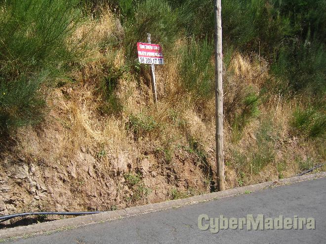 Terreno Outros para Venda Camacha, Ribeiro Serrão