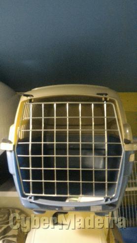 Transportadora para gatos E cães fop Outros