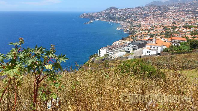 Terreno Outros para Venda Portugal, Ilha da Madeira, Funchal, São Gonçalo, Igreja,
