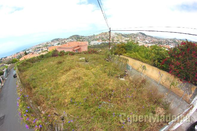 Terreno Outros para Venda Portugal, Ilha da Madeira, Funchal, São Roque, Centro,