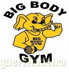 Big Body Gym