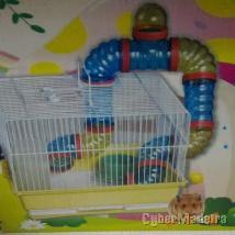 Gaiolas para hamsters
