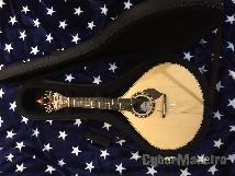 Guitarra portuguesa nova