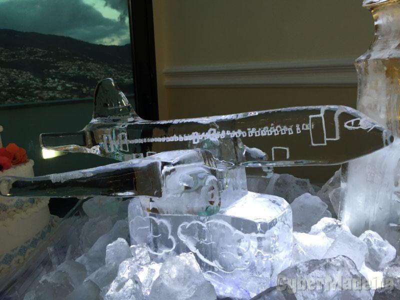 Ilha do Gelo - Esculturas em Gelo